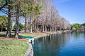 Lake Eola Park-3.jpg