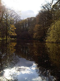 Lake in Rivelin Valley - panoramio