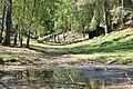 Landschaft Wildpark Schwarzach.jpg