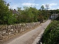 Lane at Doccombe - geograph.org.uk - 1292702.jpg