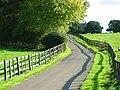 Lane to Roughmoor Grounds - geograph.org.uk - 266118.jpg