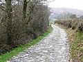 Lane towards Aberedw - geograph.org.uk - 694021.jpg
