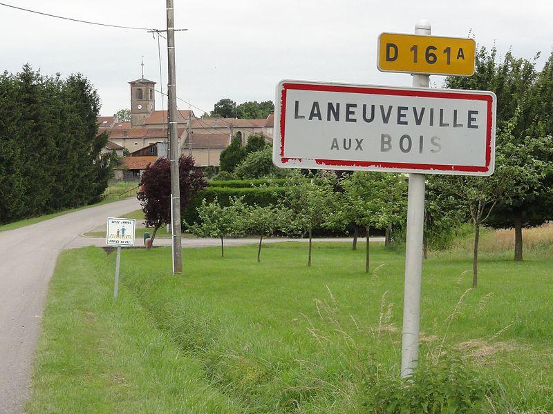 Laneuveville-aux-Bois (M-et-M) city limit sign D 161A