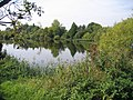 Langford Pits, Beds - geograph.org.uk - 51098.jpg