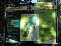 Lawachara National Park06.jpg