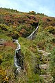 Laxey Valley - Isle of Man - geograph.org.uk - 48915.jpg