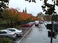 Leaves changing colour, Drumragh Car-park, Omagh - geograph.org.uk - 1020643.jpg