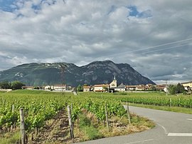 Sight of the village and its vineyards.