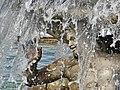 Les grandes Eaux (Versailles) (9669901721).jpg