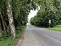 Lipowska Street - panoramio.jpg