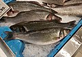 Llobarro a una peixateria de Gata.jpg