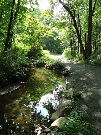 Morris County, New Jersey - A horse path along a stream in the Loantaka Brook Reservation