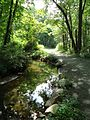 Loantaka Brook Reservation bikeway horse path and stream and reflections.jpg