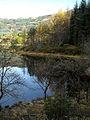 Loch Chon - geograph.org.uk - 1033699.jpg