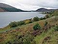 Loch na Cairidh - geograph.org.uk - 1512597.jpg