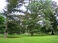 Locust Grove - IMG 7904.JPG