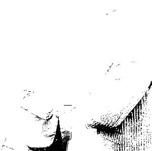 Loe de Jong