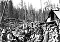 Loggers group portrait, unidentified logging company, ca 1913 (PICKETT 165).jpeg