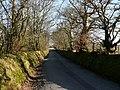 Lon Goediog - Wooded Lane - geograph.org.uk - 694872.jpg