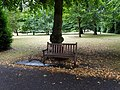 Long shot of the bench (OpenBenches 8051-1).jpg