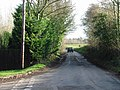 Looking E along Wingham Well Lane from junction with Watercress Lane - geograph.org.uk - 630226.jpg
