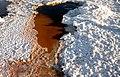 Los Ojos del Salar de Uyuni 20.jpg