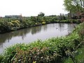 Lovely pond at Bridge Farm - geograph.org.uk - 789076.jpg