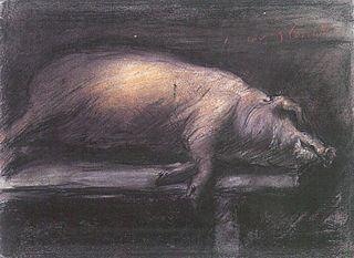 Carcasse de porc