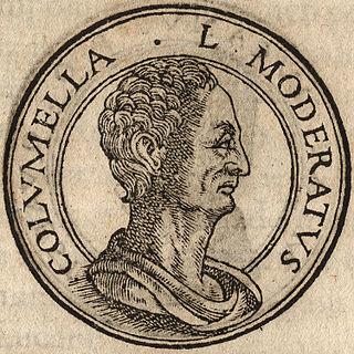 Columella Roman writer on agriculture