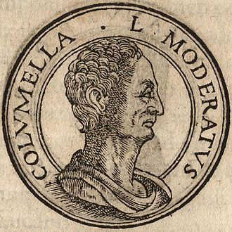 Columella - Portrait of Lucius Junius Moderatus Columella from Jean de Tournes, Insignium aliquot virorum icones, Lyon, 1559