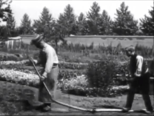 Lumières Le Jardinier (l'Arroseur arrosé) 1895