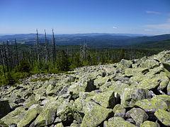 Lusen Nationalpark Bayerischer Wald 2014 - 3 025.jpg