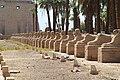 Luxor-Tempel 2016-03-20n.jpg