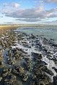 MK-08241 Hamelin Pool Stromatolites.jpg