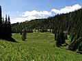 Madison County, MT, USA - panoramio (1).jpg