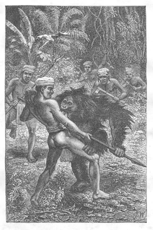 Kahayan River - Orangutan attacked by Dayaks. Victorian illustration.