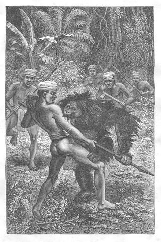 "A wood drawing of ""Orangutan attacked by Dyaks"" by Joseph Wolf."
