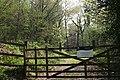 Managed Woodland - geograph.org.uk - 421071.jpg
