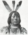 Mandan American Indian Mongoloid.png