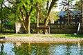 Manlius Swan Park.jpg