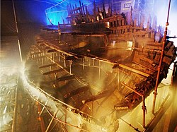 MaryRose-conservation1.jpg