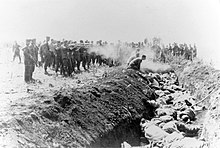 Men with an unidentified unit execute a group of Soviet civilians kneeling by the side of a mass grave.jpg