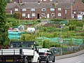 Millford Dip Allotments - geograph.org.uk - 1406062.jpg