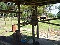Molino de Maíz en el poblado La Pionía, Edo. Lara.JPG