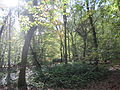 Monken Hadley Common 3.JPG