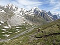 Mont Fortin, Val Veny (45695942122).jpg