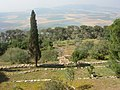 Mount Tabor (11871989244).jpg