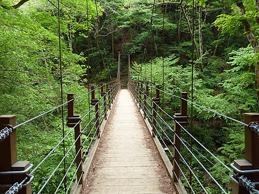 Mount Takao - Miyama Bridge (9406726203)