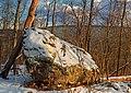 Mount Yeager Hike (2) (8418242879).jpg