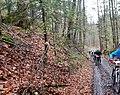 Mountainbike MTB Schönbuch Trophy im Naturpark Schönbuch bei Herrenberg - panoramio.jpg